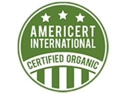 cfr-americert-logo